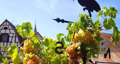 Pueblos de Alsacia con encanto | Le Boat