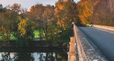 Puente y hojas de otoño