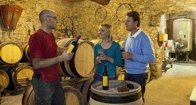 Cata de vinos en Tannay