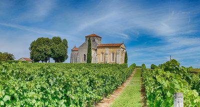 Iglesia en medio de los viñedos de Cognac