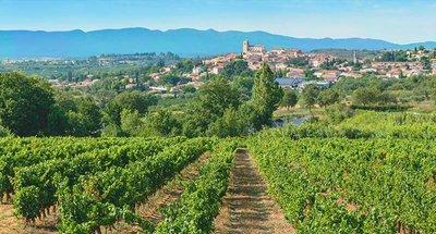 Vineyards over Béziers