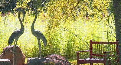 """Jardín """"Rideau Woodlands Ramble"""" cerca de Burritts Rapids"""