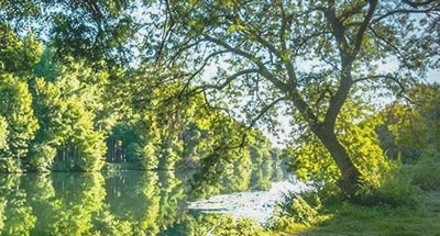 Mañana soleada en Charente
