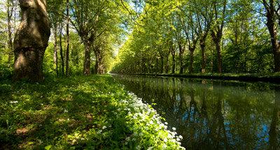 Canal del Rhône au Rhin cerca de Estrasburgo
