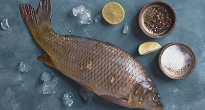 Pescado en un plato