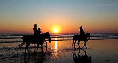 Equitación a lo largo de la playa