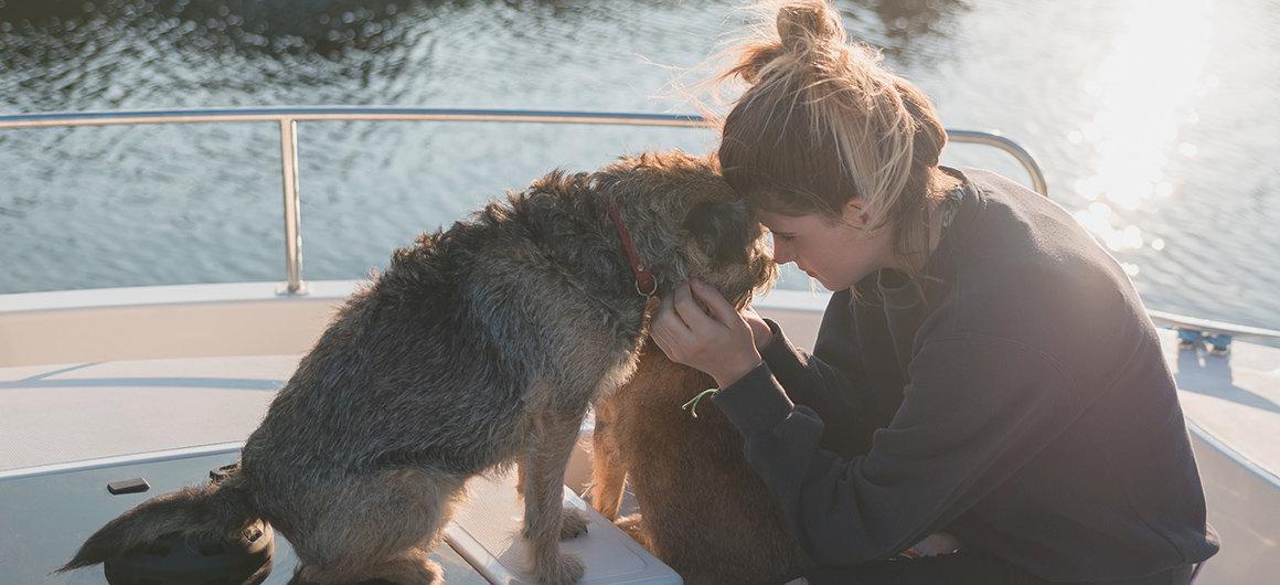 Perro a bordo de un barco