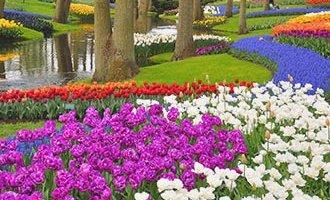 Parque floral de Keukenhof en Lisse